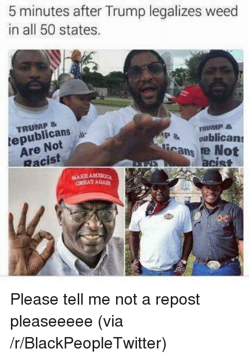 Blackpeopletwitter, Weed, and Trump: 5 minutes after Trump legalizes weed  in all 50 states.  TRUMP&  epublicans  Are Not  Racist  TRUMP &  P & ublicans  icans re Not  acist  GREAT AGA <p>Please tell me not a repost pleaseeeee (via /r/BlackPeopleTwitter)</p>
