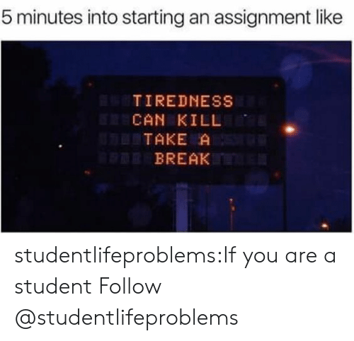 tiredness: 5 minutes into starting an assignment like  TIREDNESS  CAN KILL  TAKE A  BREAK studentlifeproblems:If you are a student Follow @studentlifeproblems