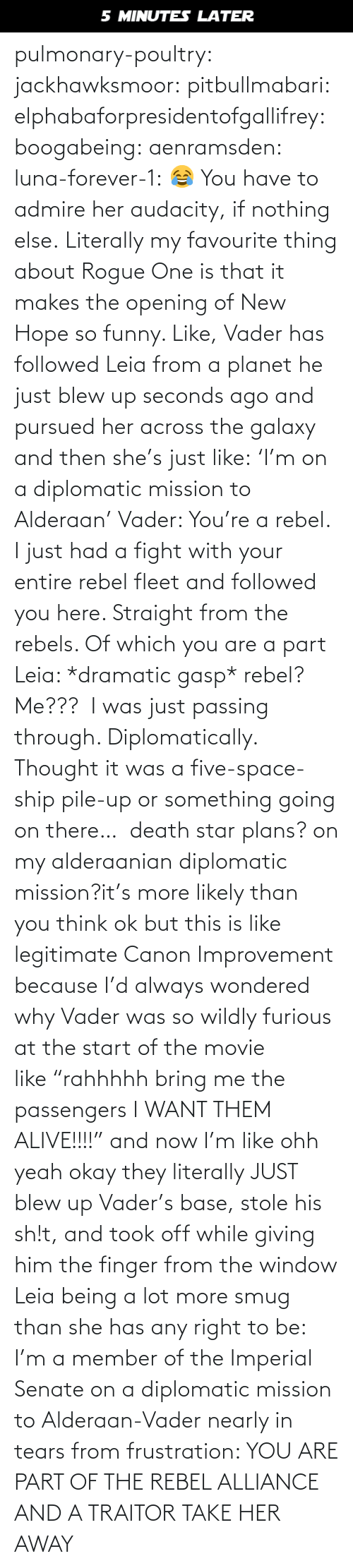 "Member: 5 MINUTES LATER pulmonary-poultry:  jackhawksmoor:  pitbullmabari:  elphabaforpresidentofgallifrey:  boogabeing:  aenramsden:  luna-forever-1: 😂 You have to admire her audacity, if nothing else.  Literally my favourite thing about Rogue One is that it makes the opening of New Hope so funny. Like, Vader has followed Leia from a planet he just blew up seconds ago and pursued her across the galaxy and then she's just like: 'I'm on a diplomatic mission to Alderaan' Vader: You're a rebel. I just had a fight with your entire rebel fleet and followed you here. Straight from the rebels. Of which you are a part Leia: *dramatic gasp* rebel? Me???  I was just passing through. Diplomatically. Thought it was a five-space-ship pile-up or something going on there…   death star plans? on my alderaanian diplomatic mission?it's more likely than you think   ok but this is like legitimate Canon Improvement because I'd always wondered why Vader was so wildly furious at the start of the movie like ""rahhhhh bring me the passengers I WANT THEM ALIVE!!!!"" and now I'm like ohh yeah okay they literally JUST blew up Vader's base, stole his sh!t, and took off while giving him the finger from the window    Leia being a lot more smug than she has any right to be: I'm a member of the Imperial Senate on a diplomatic mission to Alderaan-Vader nearly in tears from frustration: YOU ARE PART OF THE REBEL ALLIANCE AND A TRAITOR TAKE HER AWAY"