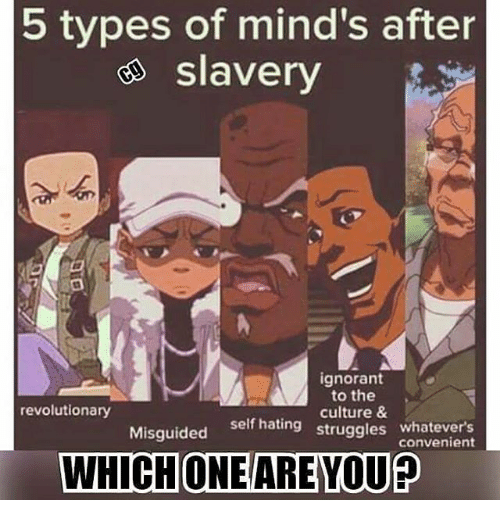 Ignorant, Memes, and 🤖: 5 types of mind's after  e slavery  ignorant  to the  culture &  self hating struggles whatevers  revolutionary  Misguided self hating  convenient  WHICHONE/ARE YOU?