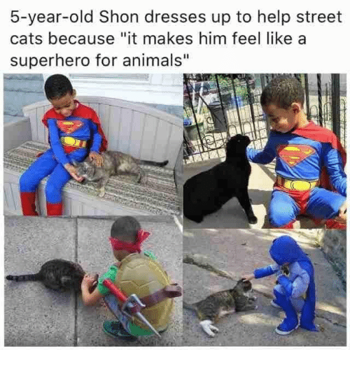 "Animals, Cats, and Superhero: 5-year-old Shon dresses up to help street  cats because ""it makes him feel like a  superhero for animals"""