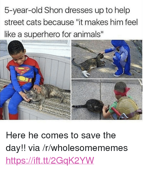 "Animals, Cats, and Superhero: 5-year-old Shon dresses up to help  street cats because ""it makes him feel  like a superhero for animals"" <p>Here he comes to save the day!! via /r/wholesomememes <a href=""https://ift.tt/2GqK2YW"">https://ift.tt/2GqK2YW</a></p>"