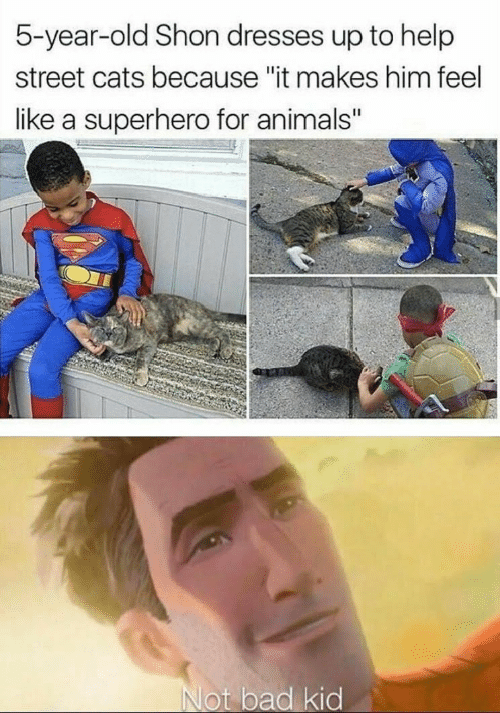 """Dresses: 5-year-old Shon dresses up to help  street cats because """"it makes him feel  like a superhero for animals""""  Not bad kid"""