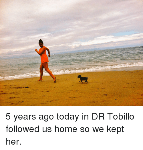 Memes, 🤖, and Homely: 5 years ago today in DR Tobillo followed us home so we kept her.