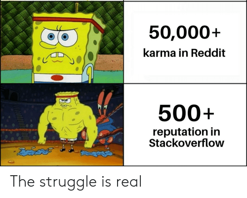 Struggle Is Real: 50,000+  karma in Reddit  500+  reputation in  Stackoverflow The struggle is real