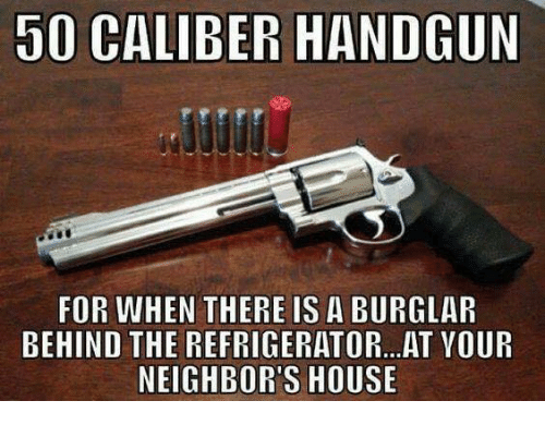 handgun: 50 CALIBER HANDGUN  FOR WHEN THERE IS A BURGLAR  BEHIND THE REFRIGERATOR.. AT YOUR  NEIGHBOR'S HOUSE