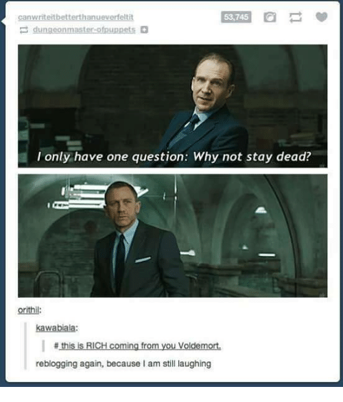 memes: 53,745  a  canwriteitbetterthanueverfeltit  I only have one question: Why not stay dead?  this is RICH coming from you Voldemort.  reblogging again, because am still laughing