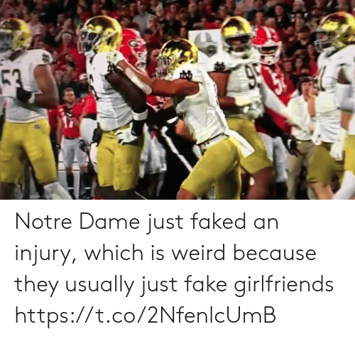 Girlfriends: 53  950 Notre Dame just faked an injury, which is weird because they usually just fake girlfriends https://t.co/2NfenlcUmB