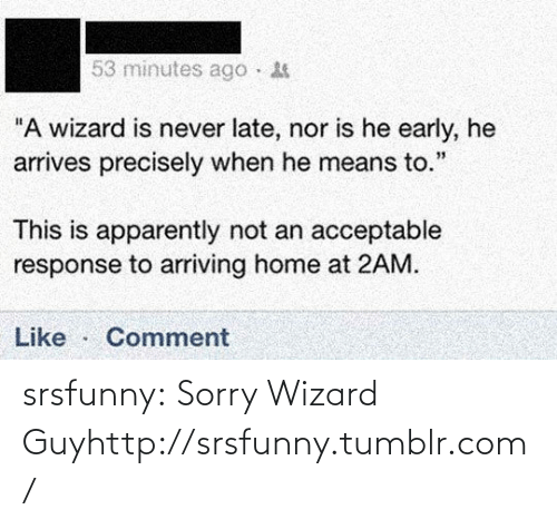 """Never Late: 53 minutes ago ·  """"A wizard is never late, nor is he early, he  arrives precisely when he means to.""""  This is apparently not an acceptable  response to arriving home at 2AM.  Like  Comment srsfunny:  Sorry Wizard Guyhttp://srsfunny.tumblr.com/"""