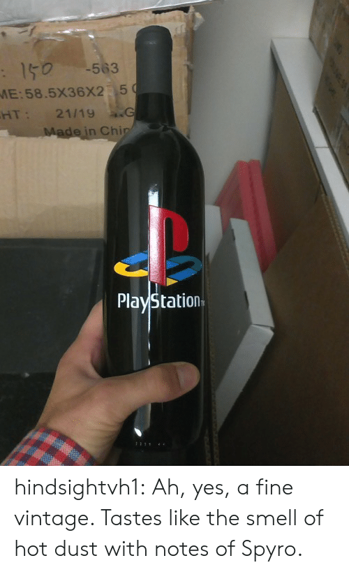 spyro: -563  :150  ME:58.5X36X2 5  21/19 G  Made in Chip  HT:  PlayStation  1111 hindsightvh1:  Ah, yes, a fine vintage. Tastes like the smell of hot dust with notes of Spyro.