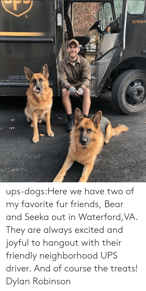 Joyful: 570193  USDOT 021 ups-dogs:Here we have two of my favorite fur friends, Bear and Seeka out in Waterford,VA. They are always excited and joyful to hangout with their friendly neighborhood UPS driver. And of course the treats! Dylan Robinson