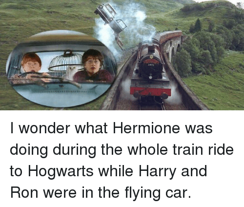 train ride: 5972 I wonder what Hermione was doing during the whole train ride to Hogwarts while Harry and Ron were in the flying car.