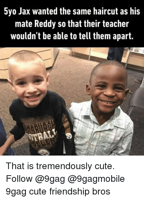 Haircut, Memes, and Haircuts: 5yo Jax wanted the same haircut as his  mate Reddy so that their teacher  wouldn't be able to tell them apart. That is tremendously cute. Follow @9gag @9gagmobile 9gag cute friendship bros