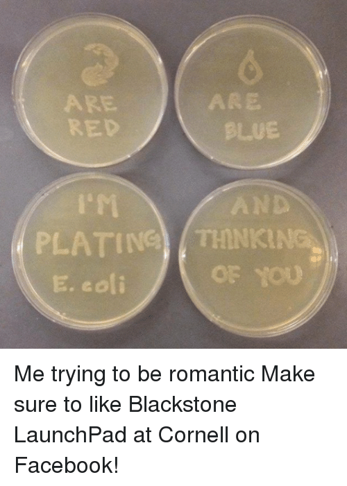 Facebook, Memes, and Blue: 6  BLUE  AND  OF YOU  ARE  RED  ARE  r1  PLATIG (THNKING  E. eoli Me trying to be romantic  Make sure to like Blackstone LaunchPad at Cornell on Facebook!
