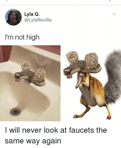Memes, Never, and 🤖: 6  Lyla Q.  @LylaRevilla  I'm not high I will never look at faucets the same way again
