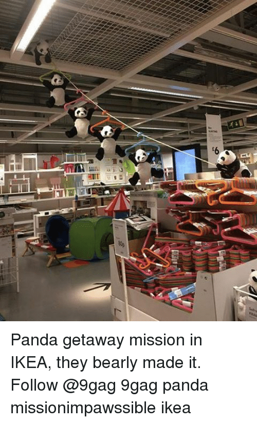 9gag, Ikea, and Memes: 6 Panda getaway mission in IKEA, they bearly made it. Follow @9gag 9gag panda missionimpawssible ikea