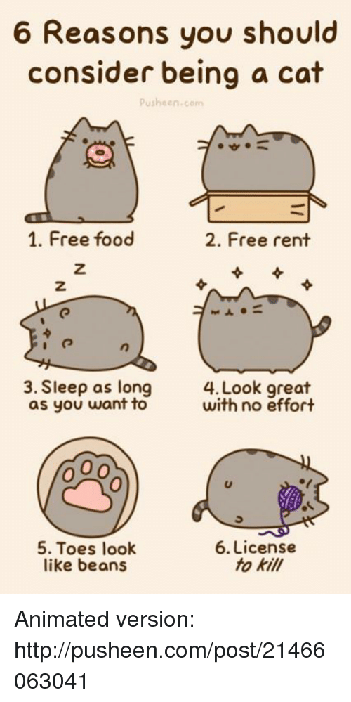 Pusheens: 6 Reasons you should  consider being a cat  Pusheen.com  1. Free food  2. Free rent  3. Sleep as long  4. Look great  with no effort  as you want to  5. Toes look  6. License  fo kill  like beans Animated version: http://pusheen.com/post/21466063041