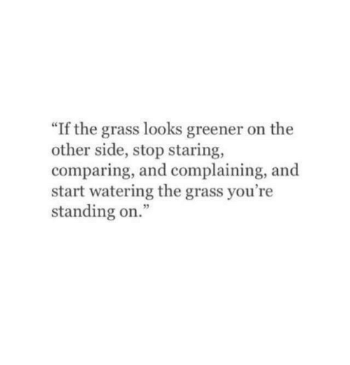 """stop staring: 60  """"If the grass looks greener on the  other side, stop staring,  comparing, and complaining, and  start watering the grass you're  standing on."""