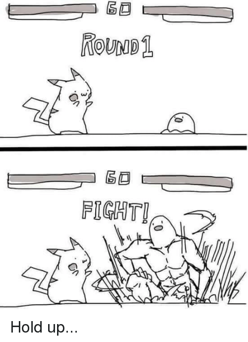 Pokemon and Fight: 60  ROUND1  0°  コ區画  FIGHT!  ノ!  C  or Hold up...