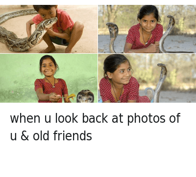 Animals, Friends, and Love: when u look back at photos of u & old friends when u look back at photos of u & old friends