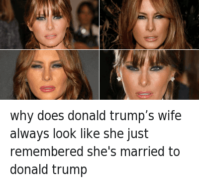 Doe, Donald Trump, and Top 20 Donald Trump Memes - 02/19/2016: why does donald trump's wife always look like she just remembered she's married to donald trump