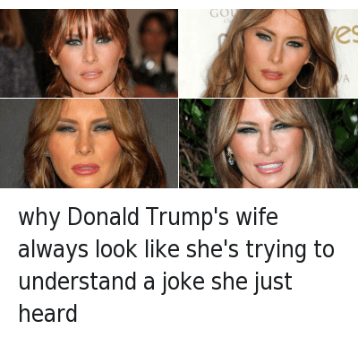 Jokes: why Donald Trump's wife always look like she's trying to understand a joke she just heard why Donald Trump's wife always look like she's trying to understand a joke she just heard