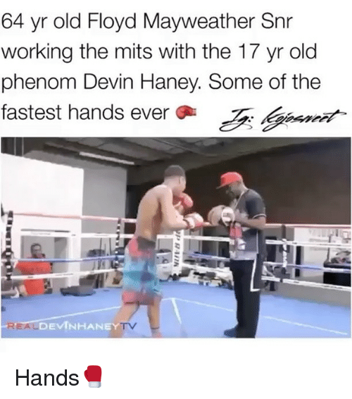 Floyd Mayweather, Mayweather, and Memes: 64 yr old Floyd Mayweather Snr  working the mits with the 17 yr old  phenom Devin Haney. Some of the  fastest hands ever Tt  fastest hands ever  ASinet  DEVINHANEY  TV Hands🥊