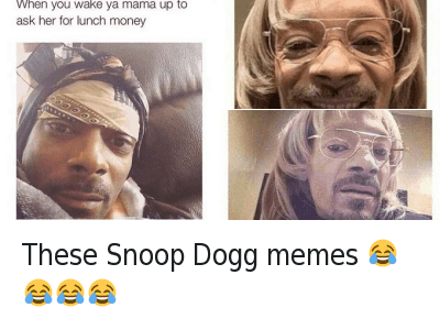 Meme, Memes, and Snoop: @chensley76  These Snoop Dogg memes 😂😂😂😂 These Snoop Dogg memes 😂😂😂😂