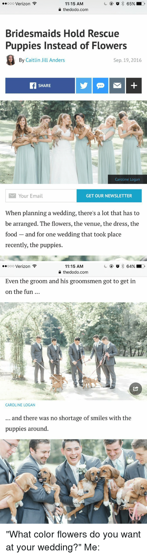 """Groomsmen: 65%  ooooo Verizon  11:15 AM  the dodo.com  Bridesmaids Hold Rescue  Puppies Instead of Flowers  By Caitlin Jill Anders  Sep. 19, 2016  SHARE  Caroline Logan  M Your Email  GET OUR NEWSLETTER  When planning a wedding, there's a lot that has to  be arranged. The flowers, the venue, the dress, the  food and for one wedding that took place  recently, the puppies.   64% LD  ooooo Verizon  11:15 AM  the dodo.com  Even the groom and his groomsmen got to get in  on the fun  CAROLINE LOGAN  and there was no shortage of smiles with the  puppies around """"What color flowers do you want at your wedding?"""" Me:"""