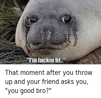 """Friends, Lit, and Mfw: That moment after you throw up and your friend asks you, """"you good bro?""""   """"I'm fuckin lit.."""" That moment after you throw up and your friend asks you, """"you good bro?"""""""