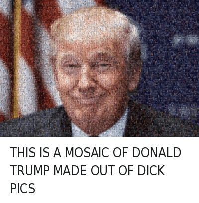 Dick Pics, Dicks, and Donald Trump: THIS IS A MOSAIC OF DONALD TRUMP MADE OUT OF DICK PICS THIS IS A MOSAIC OF DONALD TRUMP MADE OUT OF DICK PICS
