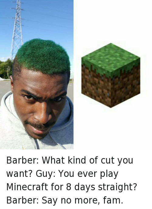 Barber, Fam, and Haircut: Barber: What kind of cut you want?  Guy: You ever play Minecraft for 8 days straight?  Barber: Say no more, fam. Barber: What kind of cut you want?-Guy: You ever play Minecraft for 8 days straight?-Barber: Say no more, fam.
