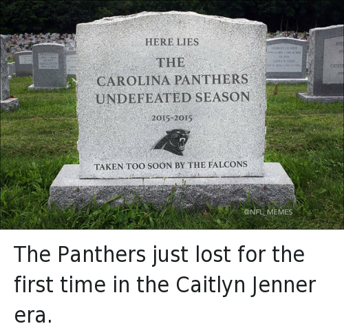 11 Panthers Memes For Broncos Fans To Fire You Up Before ... |Panthers Lose Meme