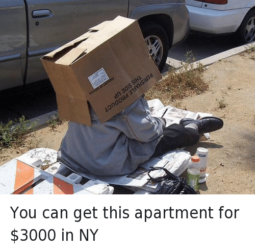 Finance, Money, and New York: @yagurlbubblez87  You can get this apartment for $3000 in NY You can get this apartment for $3000 in NY