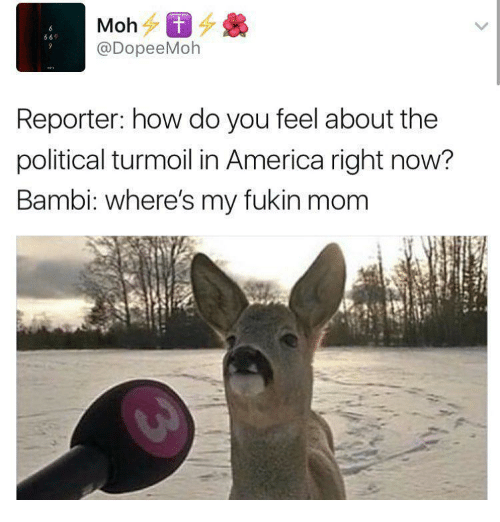 turmoil: 69  @DopeeMoh  Reporter: how do you feel about the  political turmoil in America right now?  Bambi: where's my fukin mom