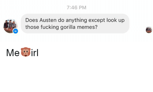 Gorilla Memes: 7:46 PM  Does Austen do anything except look up  those fucking gorilla memes? Me🐵irl