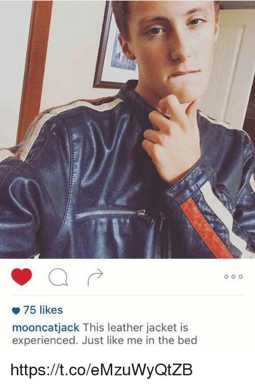 Memes, 🤖, and Leather Jacket: 75 likes  mooncatjack This leather jacket is  experienced. Just like me in the bed  O O O https://t.co/eMzuWyQtZB