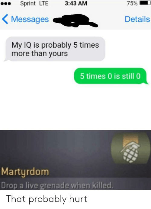 grenade: 75%  Sprint LTE  3:43 AM  Messages  Details  My IQ is probably 5 times  more than yours  5 times 0 is still 0  Martyrdom  Drop a live grenade when killed That probably hurt