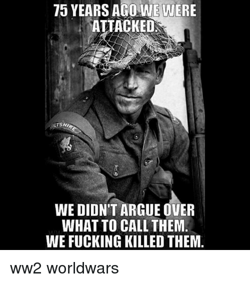 Arguing, Fucking, and Memes: 75 YEARS AGO WE WERE  ATTACKED  WE DIDN'T ARGUE OVER  WHAT TO CALL THEM.  WE FUCKING KILLED THEM. ww2 worldwars