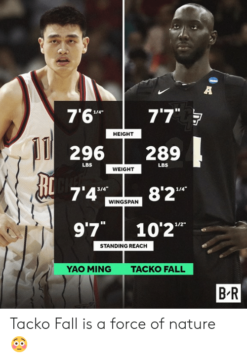 """ming: 7'6"""" 