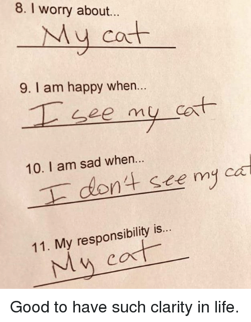 cad: 8. I worry about...  My cot  9. I am happy when..  cort  10. I am sad when..  dont see my cad  11. My responsibility is...  My cat Good to have such clarity in life.