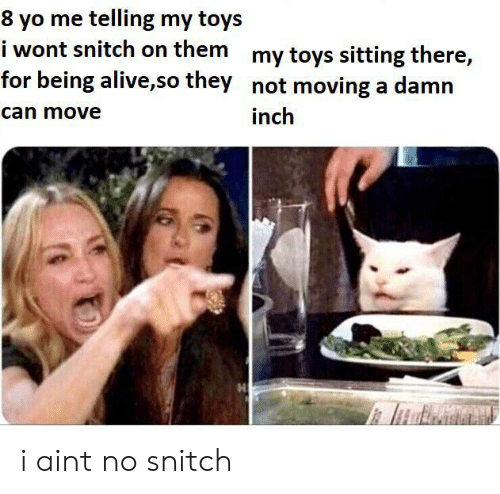 snitch: 8 yo me telling my toys  i wont snitch on them my toys sitting there,  for being alive,so they not moving a damn  can move  inch i aint no snitch