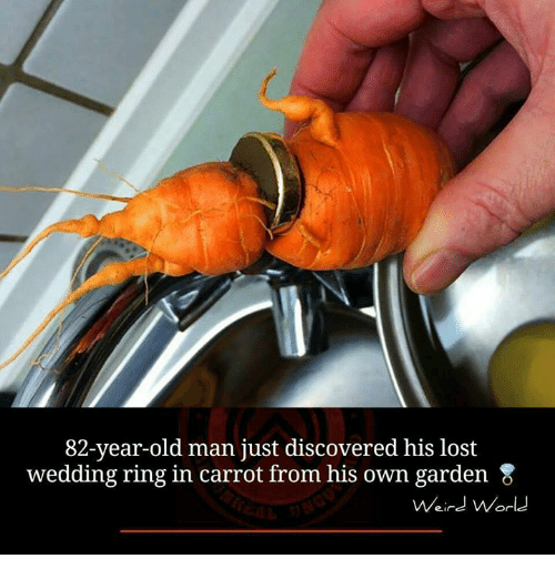 memes: 82-year-old man just discovered his lost  wedding ring in carrot from his own garden 8  Weird World