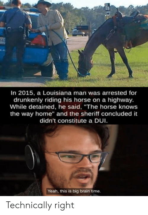 """sheriff: 840  In 2015, a Louisiana man was arrested for  drunkenly riding his horse on a highway.  While detained, he said, """"The horse knows  the way home"""" and the sheriff concluded it  didn't constitute a DUI  Yeah, this is big brain time. Technically right"""