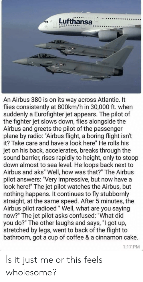 """You Saying: 9  An Airbus 380 is on its way across Atlantic. It  flies consistently at 800km/h in 30,000 ft. when  suddenly a Eurofighter jet appears. The pilot of  the fighter jet slows down, flies alongside the  Airbus and greets the pilot of the passenger  plane by radio: """"Airbus flight, a boring flight isn't  it? Take care and have a look here"""" He rolls his  jet on his back, accelerates, breaks through the  sound barrier, rises rapidly to height, only to stoop  down almost to sea level. He loops back next to  Airbus and aks"""" Well, how was that?"""" The Airbus  pilot answers: """"Very impressive, but now have a  look here!"""" The jet pilot watches the Airbus, but  nothing happens. It continues to fly stubbornly  straight, at the same speed. After 5 minutes, the  Airbus pilot radioed"""" Well, what are you saying  now?"""" The jet pilot asks confused: """"What did  you do?"""" The other laughs and says, """"I got up,  stretched by legs, went to back of the flight to  bathroom, got a cup of coffee & a cinnamon cake.  1:17 PM İs it just me or this feels wholesome?"""