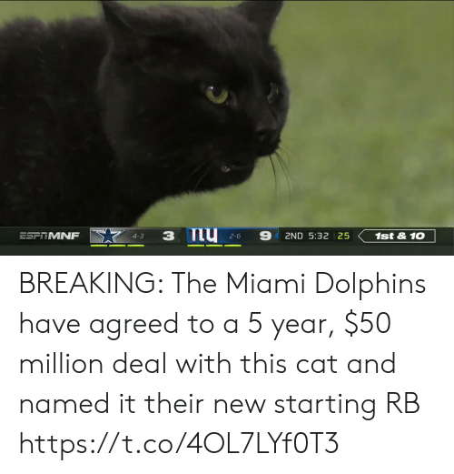 miami: 9  ESFTMNF  1st&10  2ND 5:32 25  4-3  2-6 BREAKING: The Miami Dolphins have agreed to a 5 year, $50 million deal with this cat and named it their new starting RB https://t.co/4OL7LYf0T3