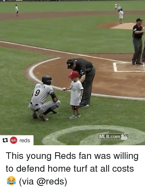 turf: 9  MILB.com  ti reds This young Reds fan was willing to defend home turf at all costs 😂 (via @reds)