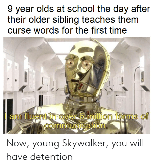 Older Sibling: 9 year olds at school the day after  their older sibling teaches them  curse words for the first time  am fluent in over 6 million forms of  communication. Now, young Skywalker, you will have detention