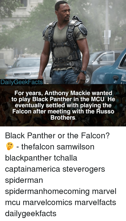 falcone: 900  DailyGeekFacts  For years, Anthony Mackie wanted  to play Black Panther in the MCU. He  eventually settled with playing the  Falcon after meeting with the Russo  Brothers Black Panther or the Falcon? 🤔 - thefalcon samwilson blackpanther tchalla captainamerica steverogers spiderman spidermanhomecoming marvel mcu marvelcomics marvelfacts dailygeekfacts