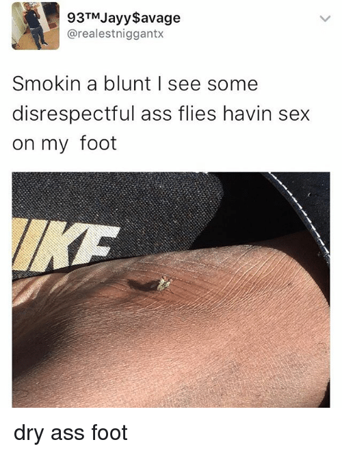 Ass, Funny, and Memes: 93TM ayy Savage  arealestniggantx  Smokin a blunt I see some  disrespectful ass flies havin sex  on my foot dry ass foot